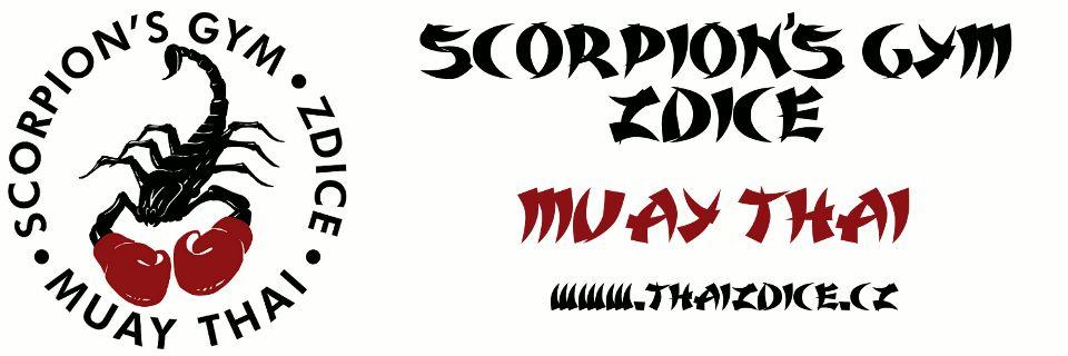 076f2efd529 Scorpion`s gym - Oficiální stránky Města Zdice